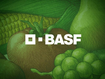 BASF Crop protection global
